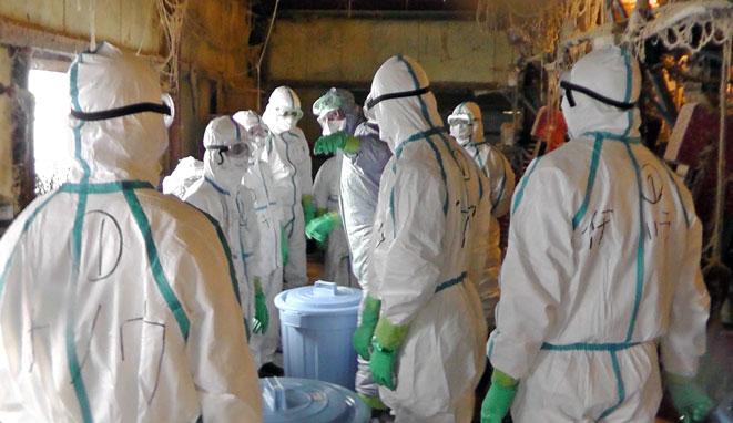 2020年12月10日(木)                                                                                   拡大危惧「早く終息を」 千葉県や市連携、防疫に全力 旭・鳥インフル